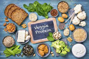 vegetar og protein