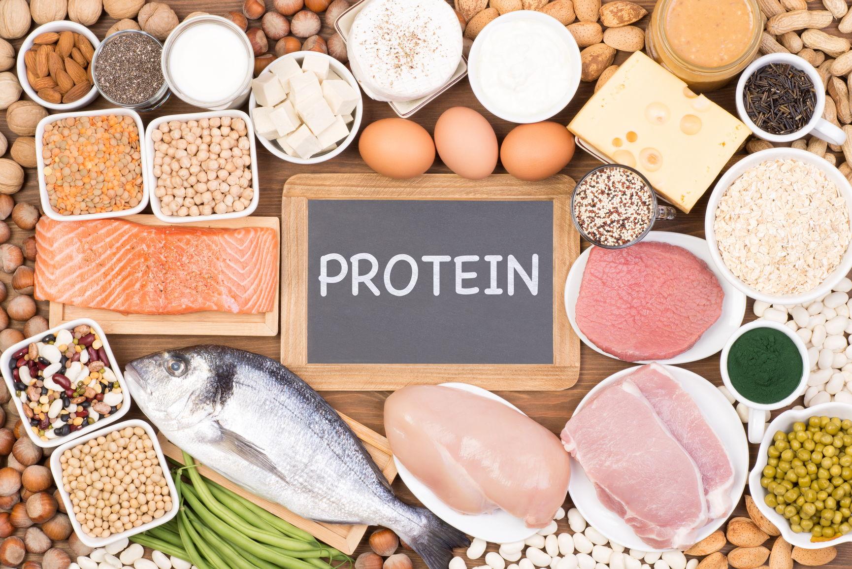 mat med mest protein